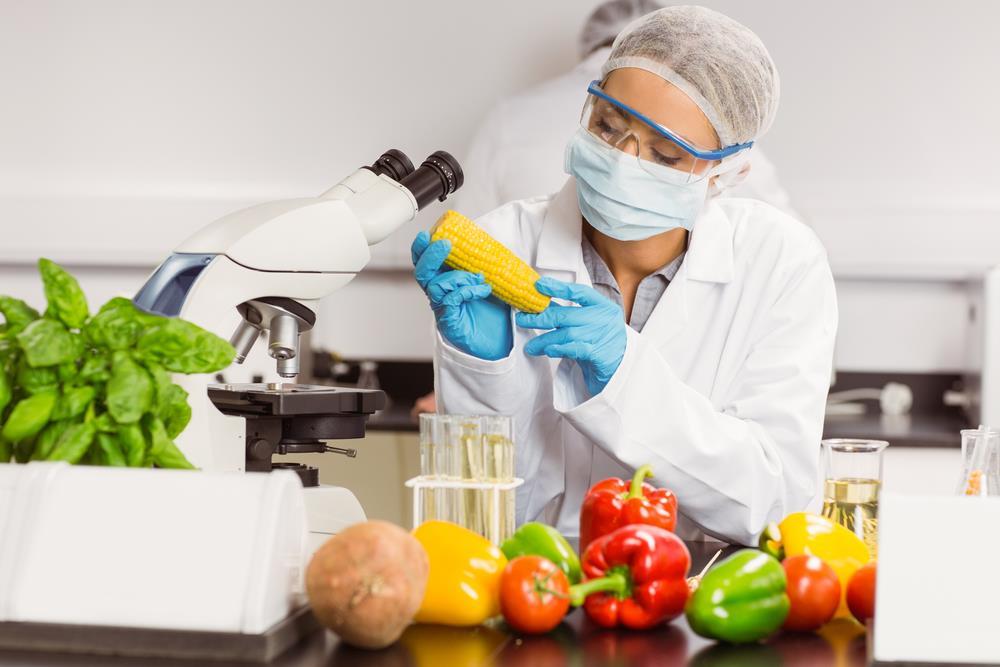 Ngành công nghệ chế biến thực phẩm có gì?